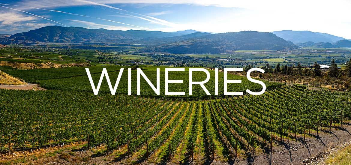 Wine 411 for Wineries